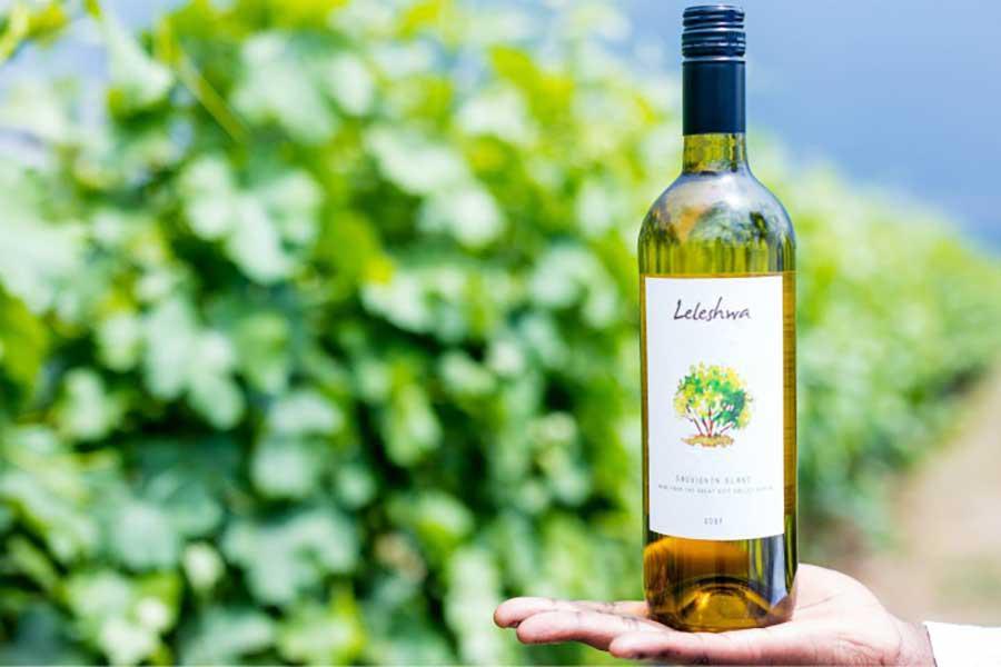 Leleshwa vineyard